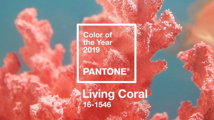 Living Coral - главный цвет 2019 года по версии Pantone