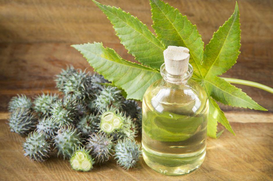 Касторовое масло для лица: отзывы, как использовать, польза, вред, рецепты масок