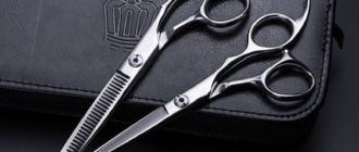 Лучшие профессиональные парикмахерские ножницы
