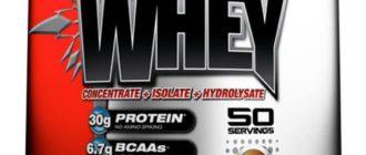 Всё о применение сывороточного протеина