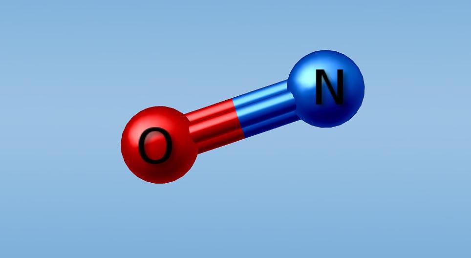 Побочные эффекты оксида азота для организма