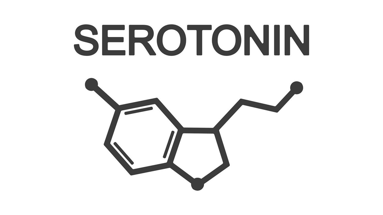 В каких продуктах содержится серотонин?